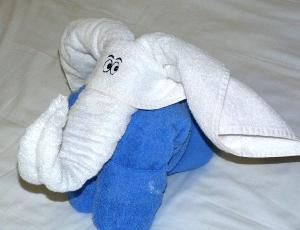 Accueil en cabine. Ce soir : un éléphant !
