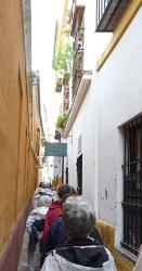 Séville, quartier Santa Cruz